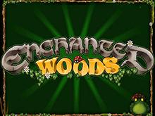 Enchanted Woods: игровой автомат с уникальным интерфейсом