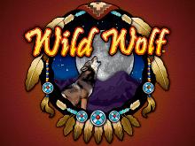 Игровой автомат Дикий Волк – играйте в клубе Вулкан без регистрации
